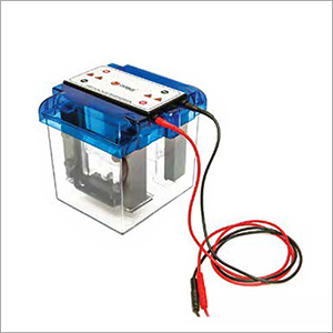 Vertical Mini Dual Gel Electrophoresis Unit