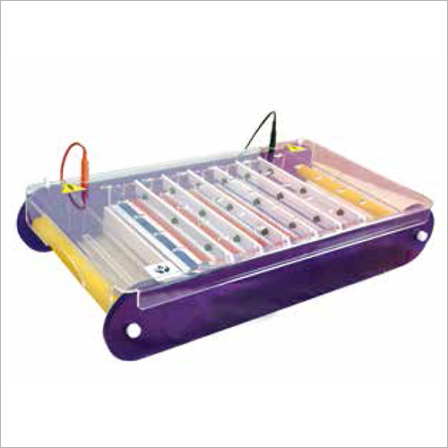 ACE Series Horizontal Immersed Gel Electrophoresis Unit