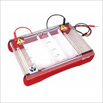 Maxi Horizontal Immersed Gel Electrophoresis Unit