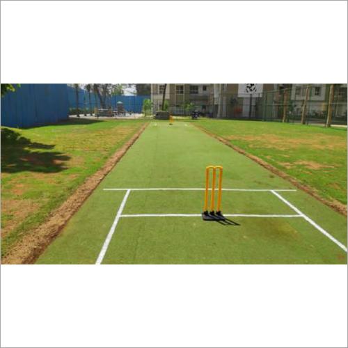 Standard Cricket Pitch