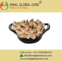 New Crop Dry Ginger