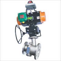 Flush Bottom Valve With Rotary Actuator