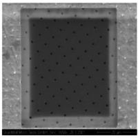Quantifoil R1/4 Holey Carbon Films - Circular