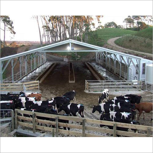 Prefabricated GI Cattle Shed