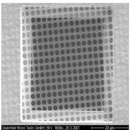 Quantifoil R2/1 Holey Carbon Films - Circular