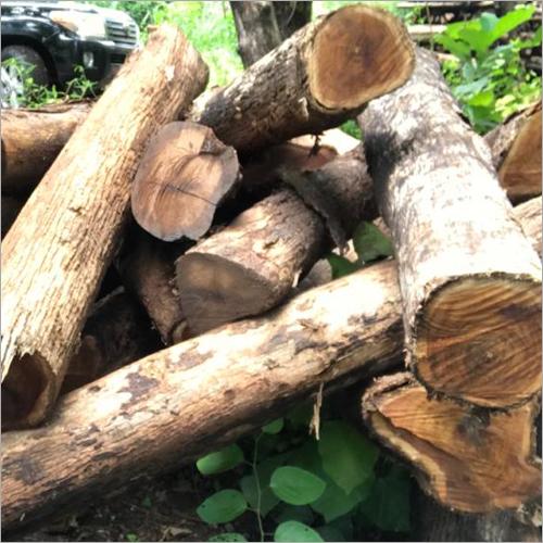 Brown Teak Logs