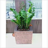 FRP Stick Flower Pot