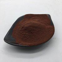 Brazilian Cocoa Extract Cocoa Bean Extract Theobroma Cacao L.