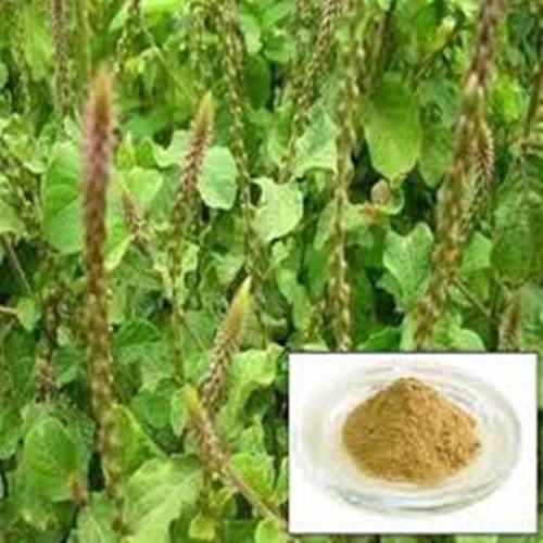 Apamarga Extracts