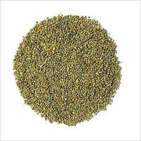 Natural Bajra Seeds