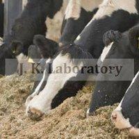 Animal Feed Testing Service