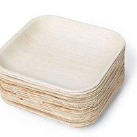 Biodegradable Areca Square Plate