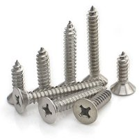 Stainless Steel Screw, Philips Head Screw,