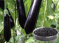 Potassium Humate Black Shiny Flakes