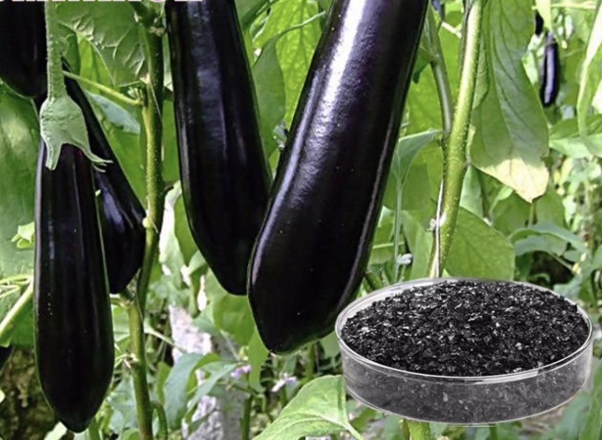 Potassium Humate Ultra Shiny Black Flakes