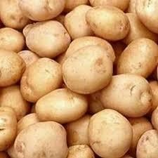 Fresh Jyoti Potato