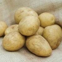 Fresh Pukhraj Potato