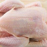 Top Quality Brazilian Halal Whole Frozen Chicken