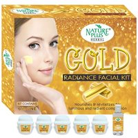 Nature Plus Herbal Gold Facial Kit, 370gm