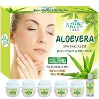 Aloevera Spa Facial Kit