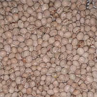 White Toor Seeds