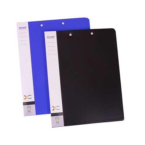 Official Plastic File Folder