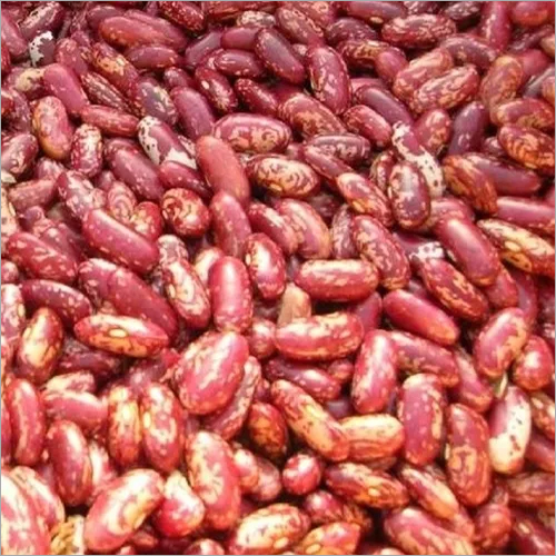 Export Quality Red Kidney Beans, Dark Red Kidney and White Kidney Beans Offer