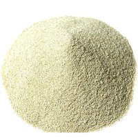 Brazilian Grade A  Garlic Powder For Sale