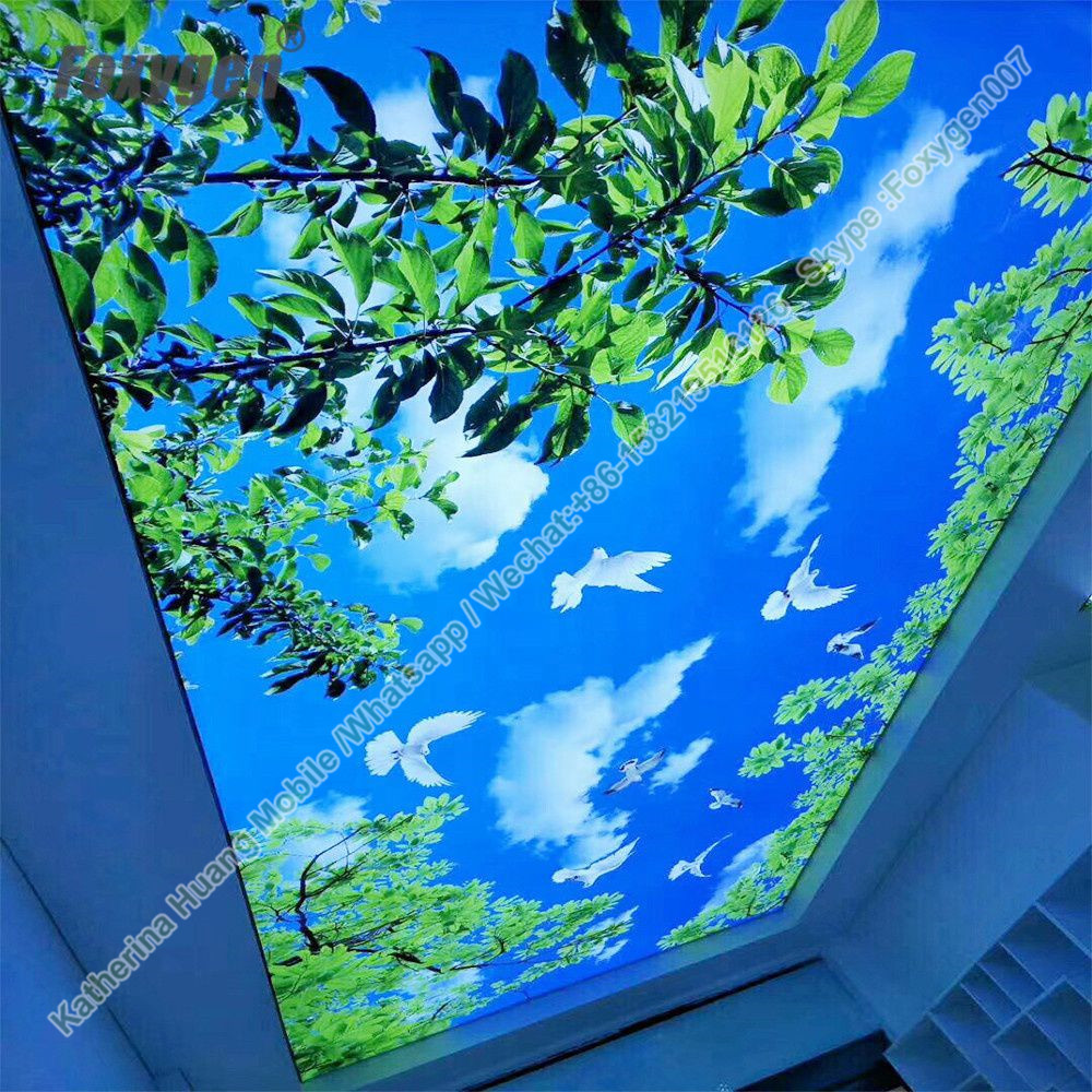Fireproof B1 leave translucent PVC stretch ceiling film 4011 roll material max with 5 meter and finished products selling