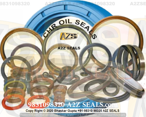 Engine Seal