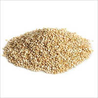 Quinoa Seeds And Grain