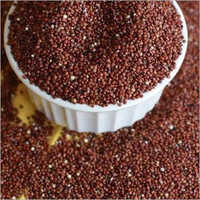 Red Quinoa Grain