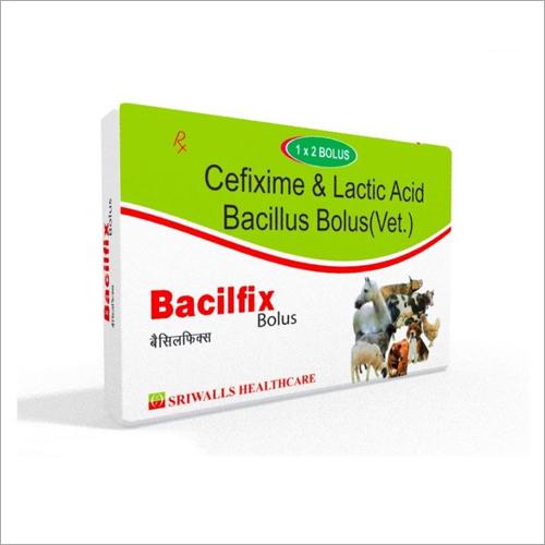 Cefixime & Lactic Acid Bacillus Bolus
