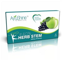 Herbostem 30 Pouch Fruit Extract