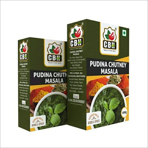 100 GM Pudina Chutney Masala