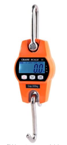 Mini Crane Industrial Hanging scale