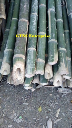 Raw Bamboo Pole