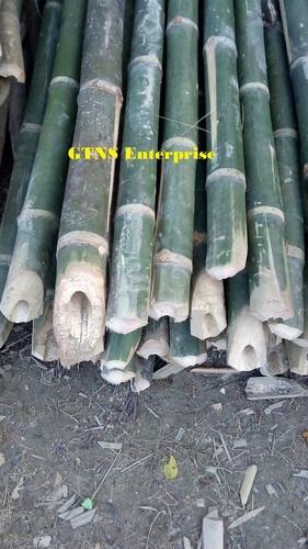 Raw Bamboo Pole