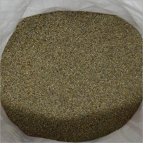 Fresh Millet
