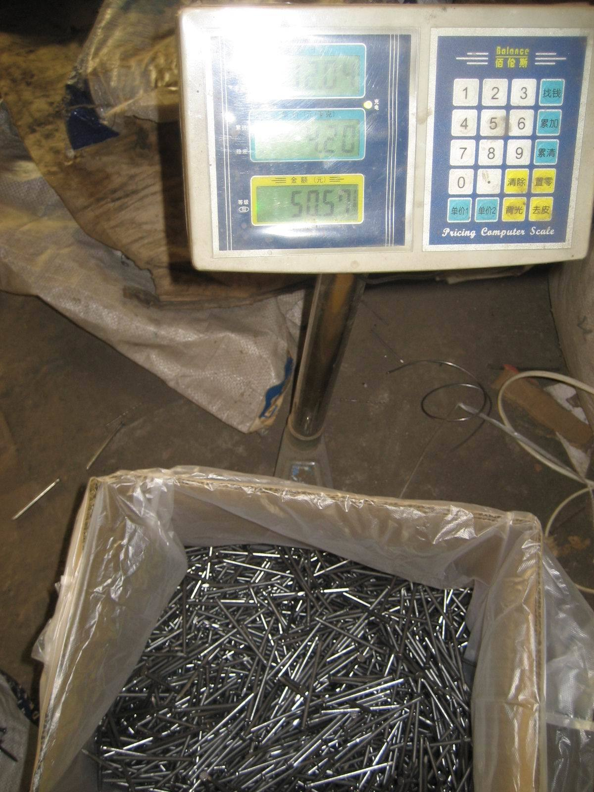 Common Nails & Roofing Nails
