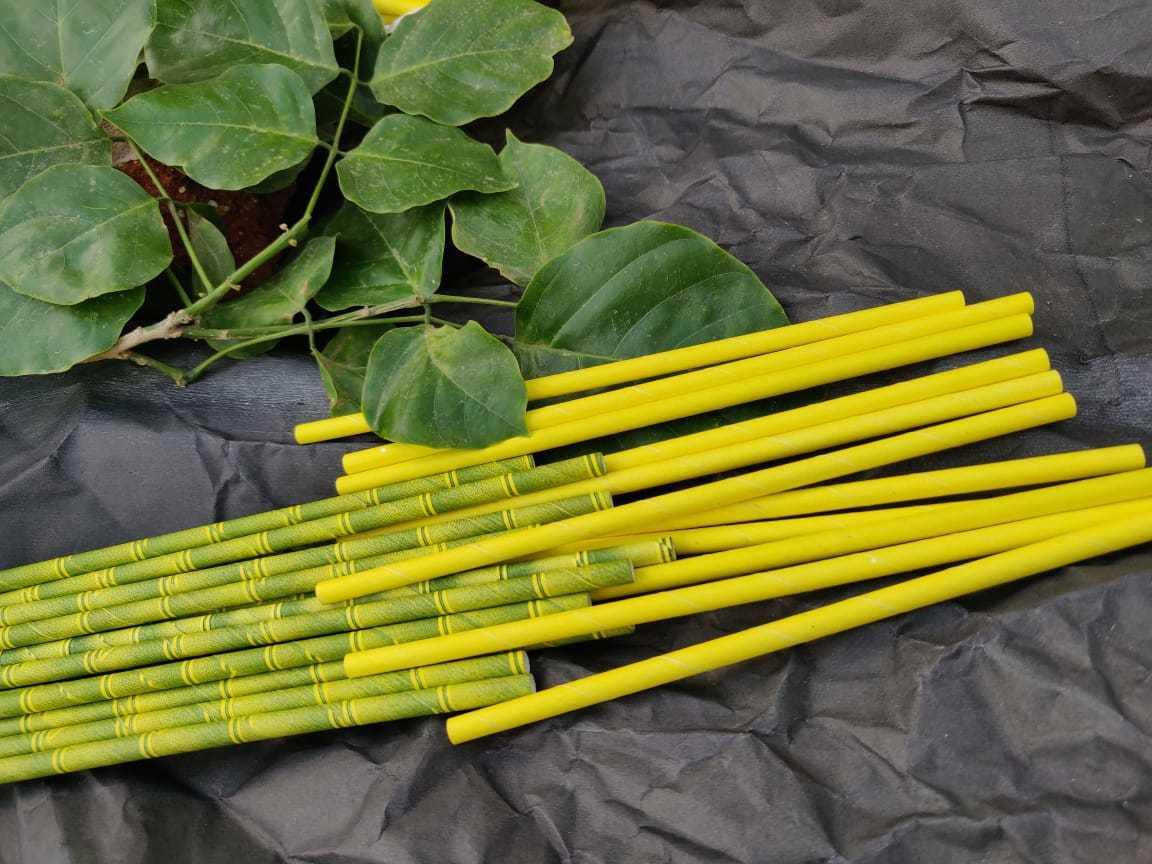 Bamboo Design Paper Straw