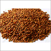 Brown Masoor Dal
