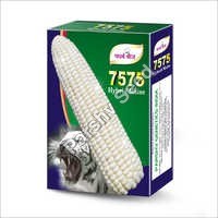 7575 Hybrid White Maize Seeds