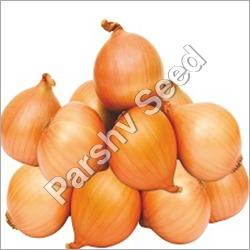 Desi Pyaj Beej Onion Seed InnoVeg