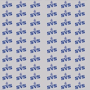 SVS Snacks Automobile Parts Packing Cover