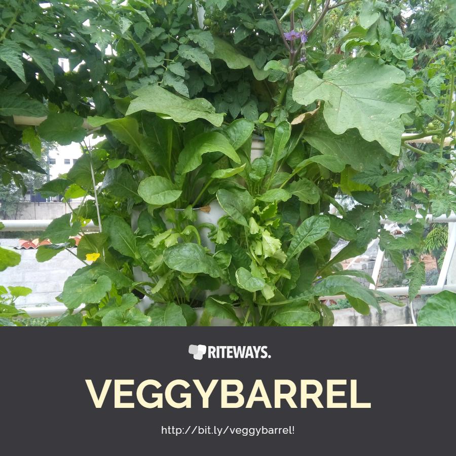 veggyBARREL Balcony Vegetable Garden Planter