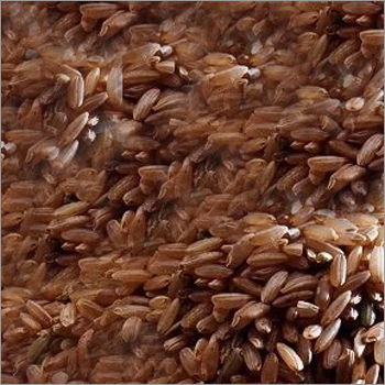 Mrugnayani Gold Brown Rice