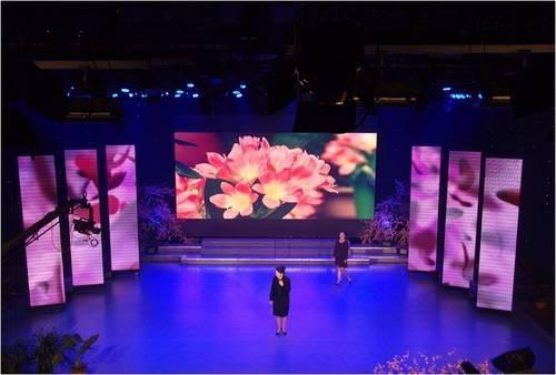Indoor LED Screen