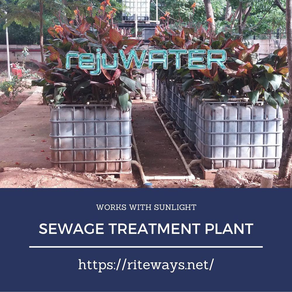 Solar Sewage Treatment Plant