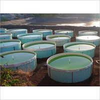 Industrial Biofloc Aquaculture Tank